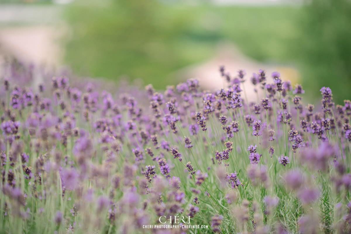 cheriwed pre wedding in hokkaido japan tomita farm lavender field 31 2 - Pre-Wedding Photo in Hokkaido, Japan with Lavender Field at Tomita Farm - Lowina & Simon from Hong Kong