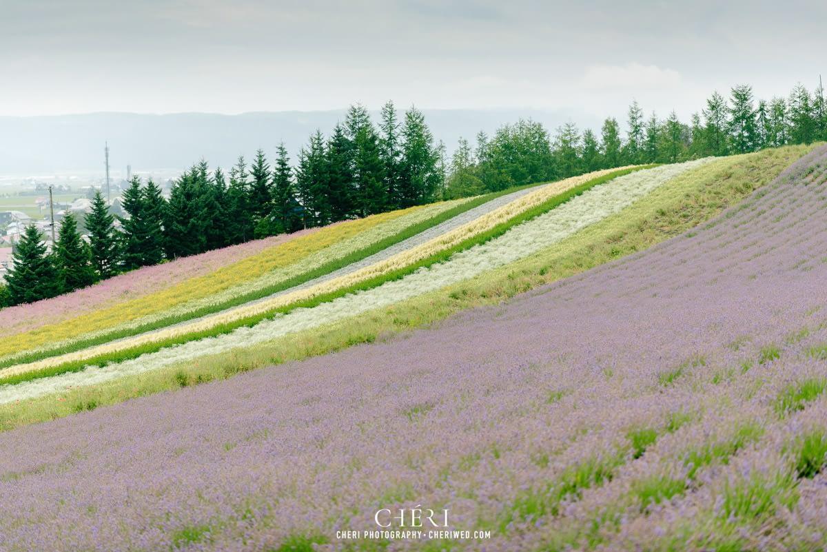 cheriwed pre wedding in hokkaido japan tomita farm lavender field 37 - Pre-Wedding Photo in Hokkaido, Japan with Lavender Field at Tomita Farm - Lowina & Simon from Hong Kong