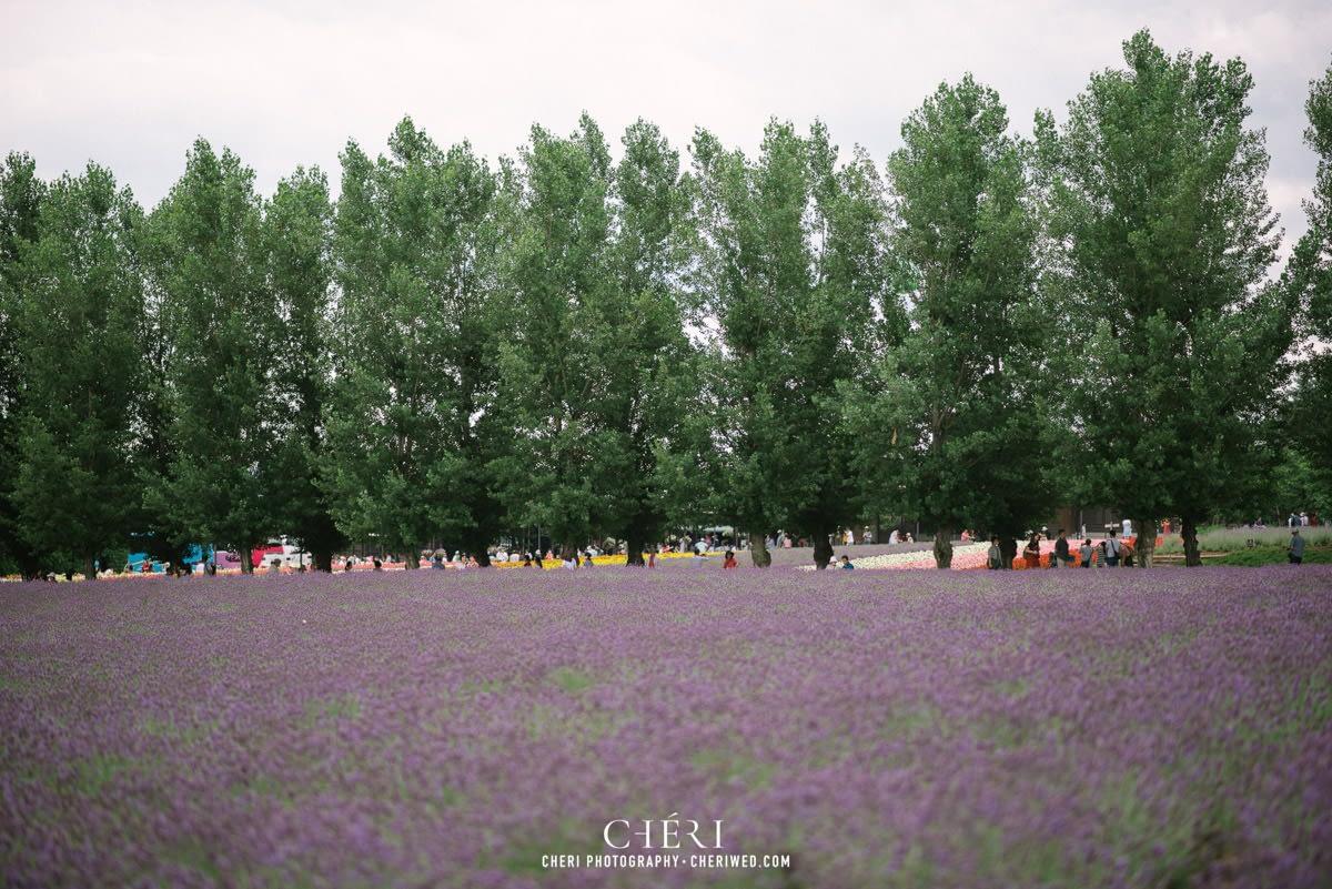 cheriwed pre wedding in hokkaido japan tomita farm lavender field 11 - Pre-Wedding Photo in Hokkaido, Japan with Lavender Field at Tomita Farm - Lowina & Simon from Hong Kong